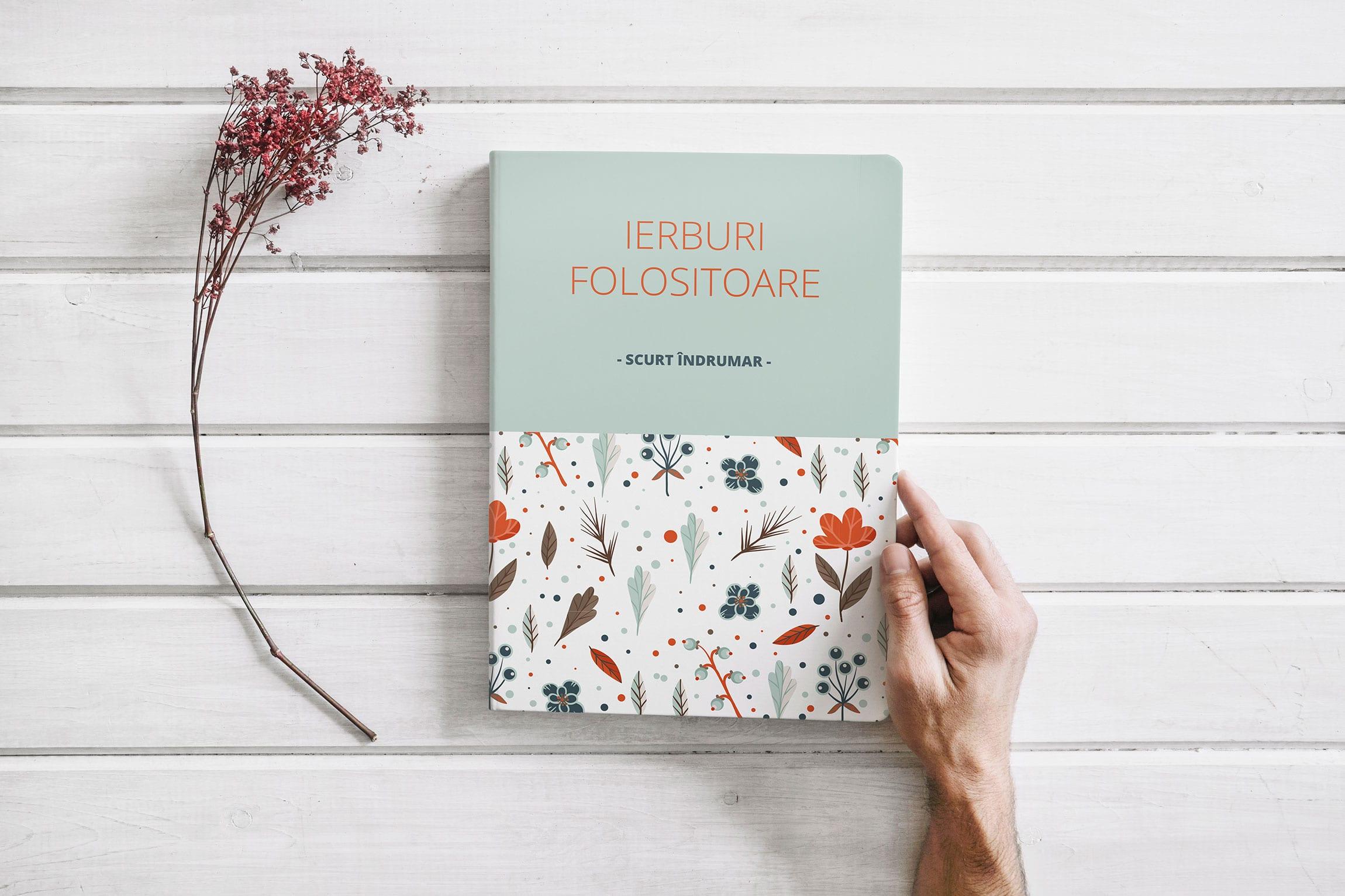 Servicii Design copertă carte tipărită și carte electronică