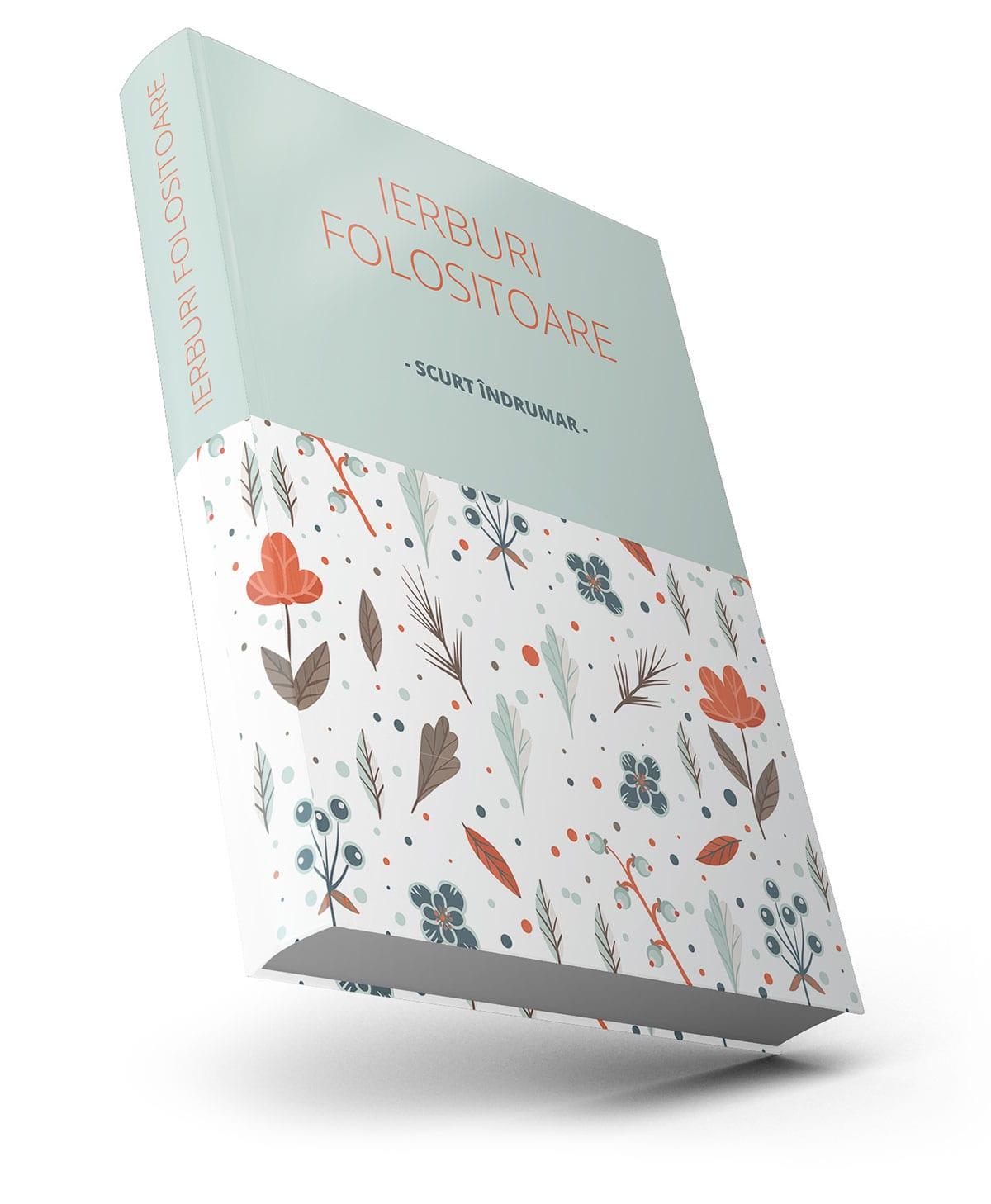 Servicii de grafică copertă dedicate autorilor de carte